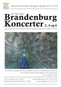 Bach Brandenburg 2015